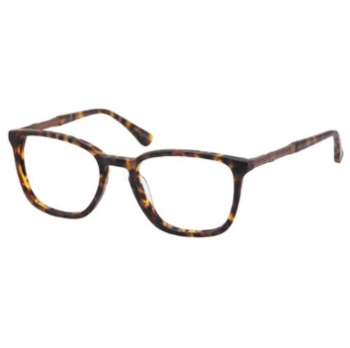 Perry Ellis PE 366 Eyeglasses