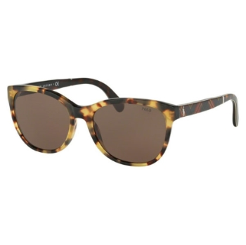 Polo PH 4117 Sunglasses