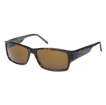 Runway RS 623 Sunglasses
