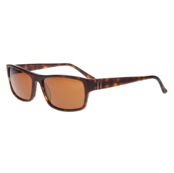 Runway RS 644 Sunglasses