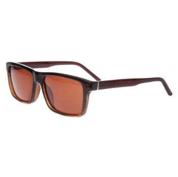 Runway RS 646 Sunglasses