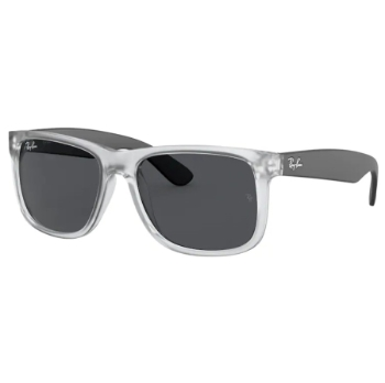 Ray-Ban RB 4165F - Continued Sunglasses