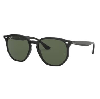Ray-Ban RB 4306F Sunglasses
