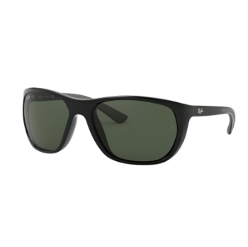 Ray-Ban RB 4307 Sunglasses