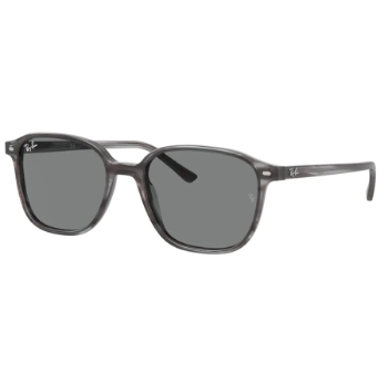 Ray-Ban RB 2193 Sunglasses