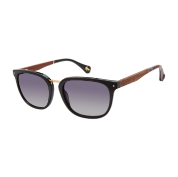 Robert Graham Hudson Sunglasses