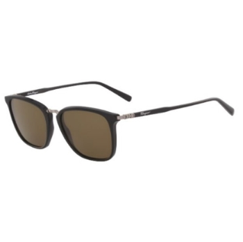 Salvatore Ferragamo SF910S Sunglasses