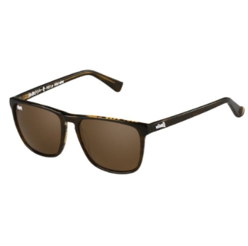 Superdry SDS-Ichi Sunglasses