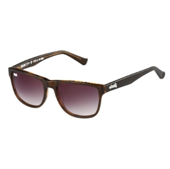 Superdry SDS-NI Sunglasses