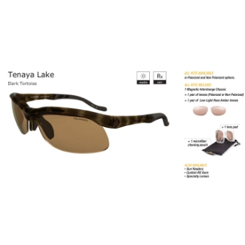 Switch Stoke Tortoise/Contrast Amber Reflection Bronze Non Polarized Sun Kit Sunglasses