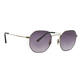 TR Optics Boston Sunglasses