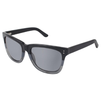 Ted Baker B613 Sunglasses