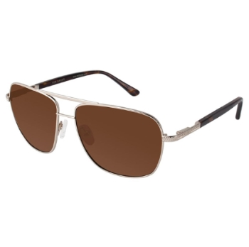Ted Baker B638 Sunglasses