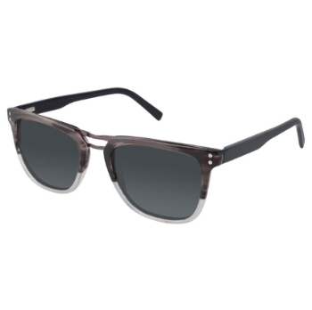 Ted Baker B656 Sunglasses