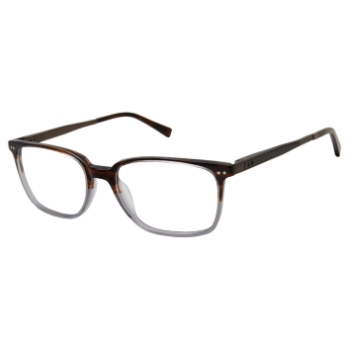 Ted Baker TM003 Eyeglasses
