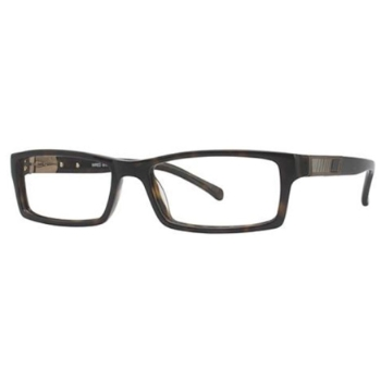 Wired 6019 Eyeglasses