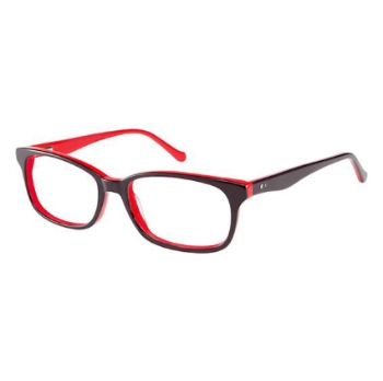 Cantera Anthony Eyeglasses