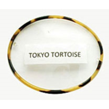 Berkshire Chase Berkshire Saddle Round Tokyo Tortoise Front Rimed w/ Covered Polo Temples Eyeglasses