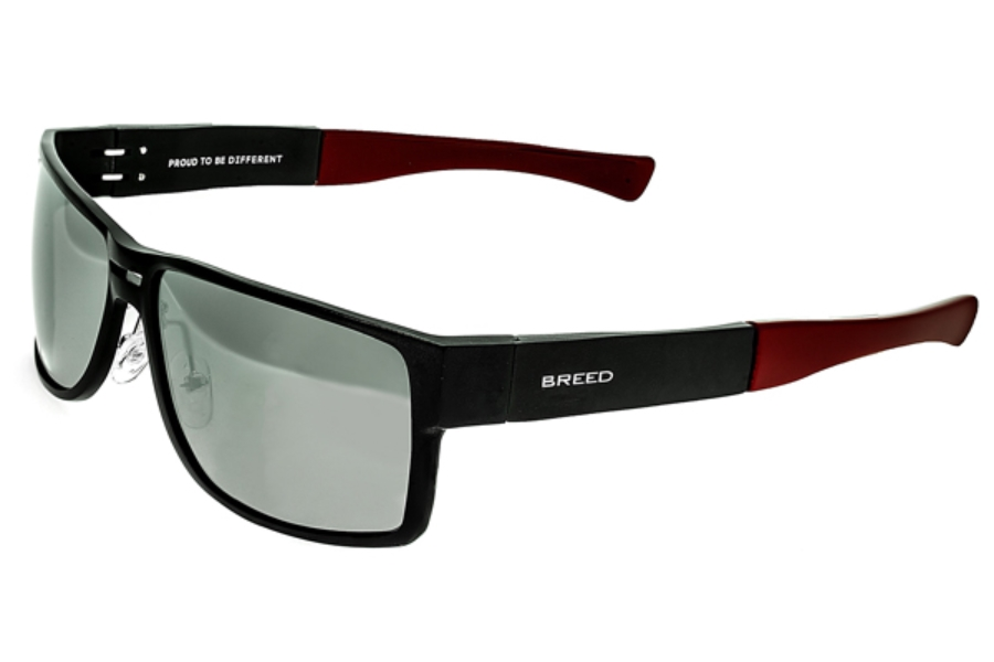 Breed Stratus Sunglasses in 010BK Black/Silver