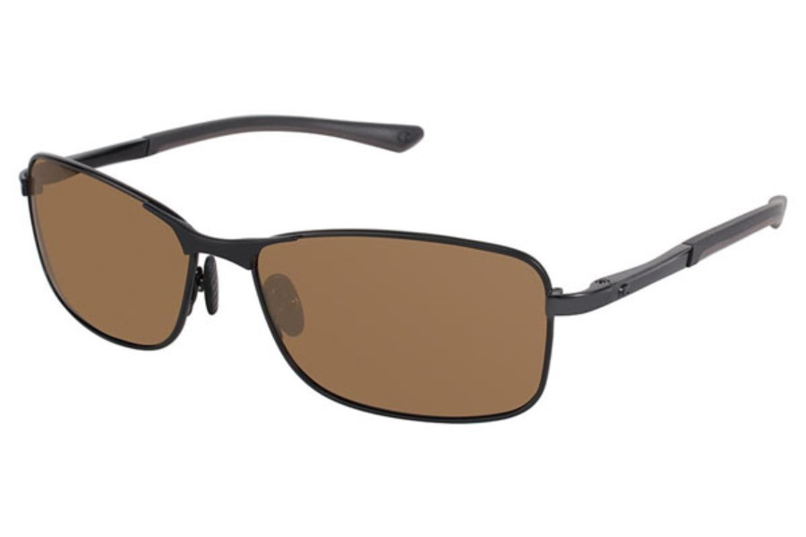 Champion 6018 Sunglasses in C02 Shiny Black