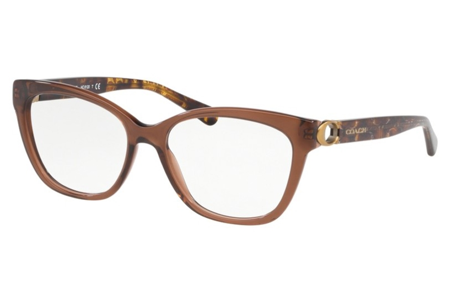Coach HC6120 Eyeglasses in 5035 Transparent Brown