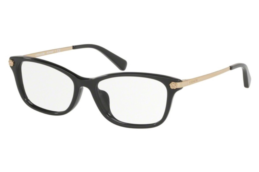 Coach HC6142F Eyeglasses in Coach HC6142F Eyeglasses