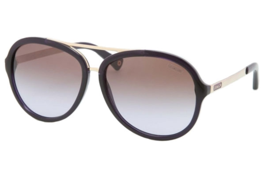 Coach HC8054 Sunglasses in Coach HC8054 Sunglasses