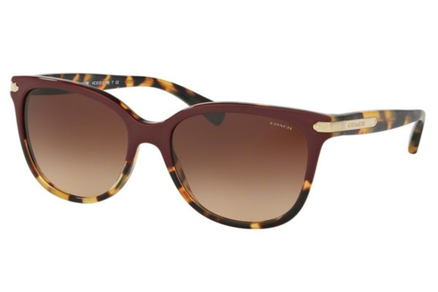 Coach HC8132 Sunglasses in Coach HC8132 Sunglasses