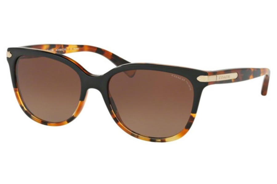 Coach HC8132 Sunglasses in 5438T5 Black Tortoise/Tortoise / Brown Gradient Polar