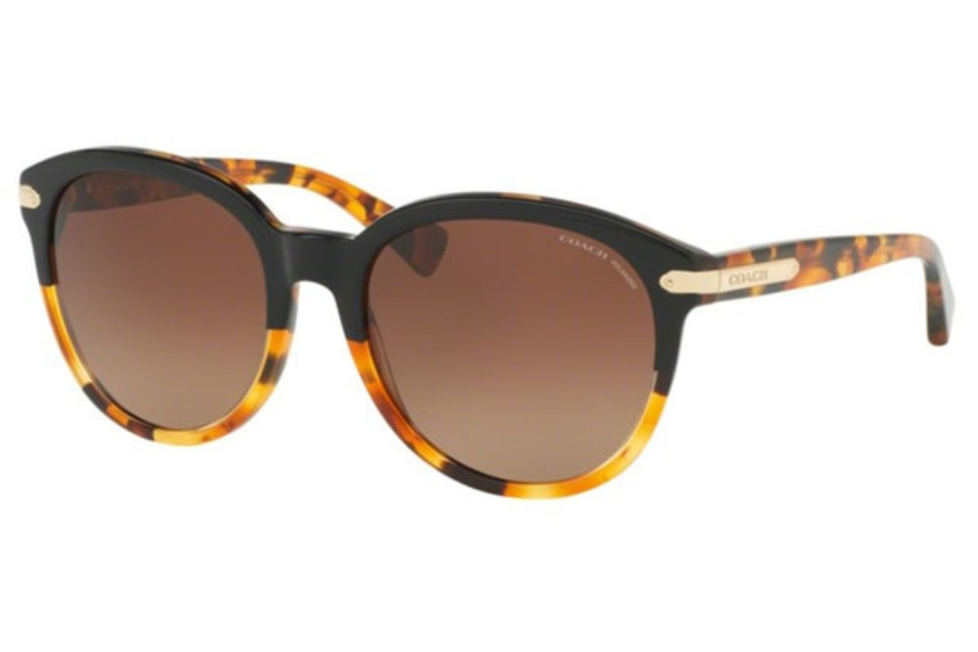 4da0188522 Coach HC8140 Sunglasses in 5438T5 Black Tortoise Tortoise   Brown Gradient  Polar ...
