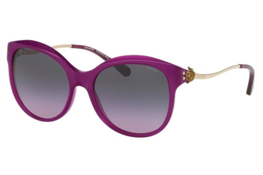 Coach HC8189F Sunglasses in 541890 Violet/Light Gold / Violet Grey Gradient (Discontinued)