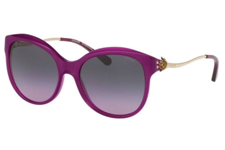 Coach HC8189 Sunglasses in 541890 Violet/Light Gold / Violet Grey Gradient
