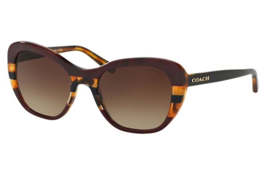 Coach HC8204 Sunglasses in 544413 Aubgn Navy Tort Varsity Stripe / Smoke Gradient (Discontinued)