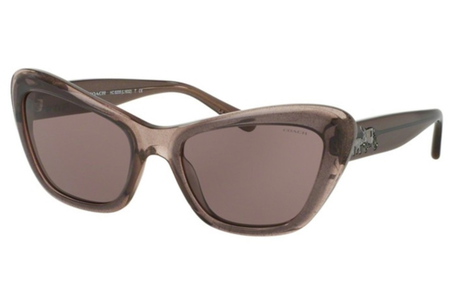 Coach HC8205 Sunglasses in 54477N Dirty Lilac / Purple Solid