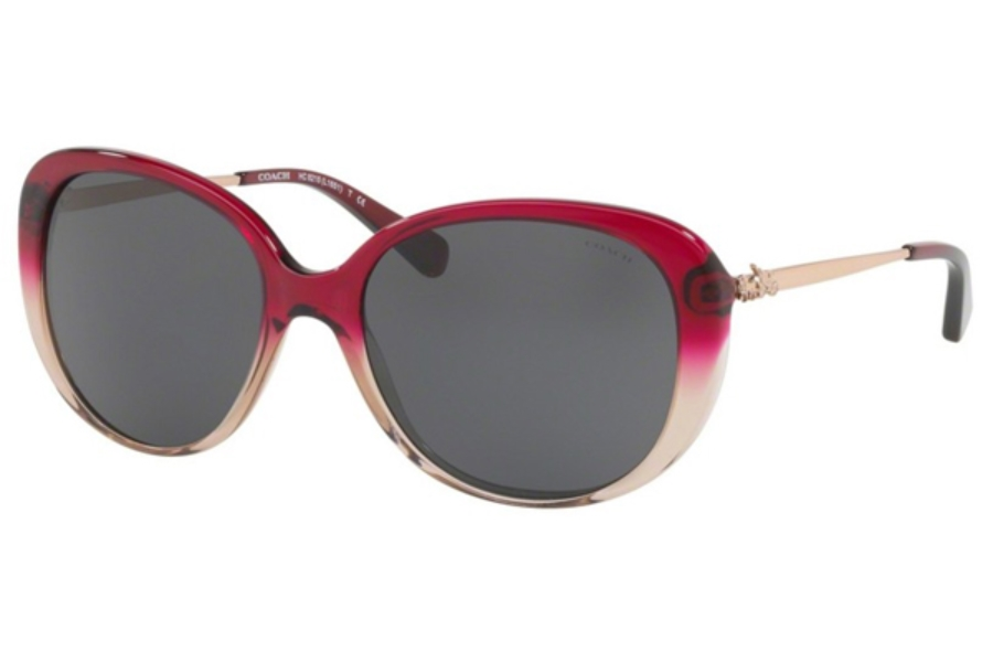 Coach HC8215 Sunglasses in Coach HC8215 Sunglasses