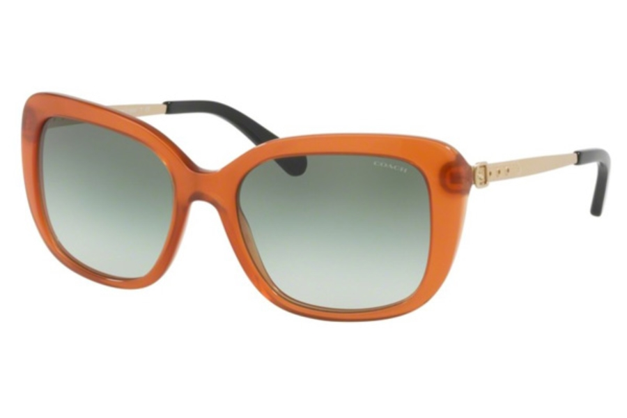 Coach HC8229 Sunglasses in 55028E Amber / Green Gradient