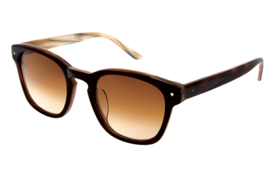 Paul Frank 202 Specter Sunglasses in Tortoise Gold