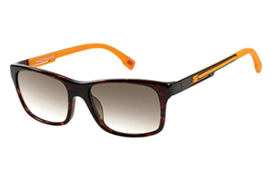 7cfe4f999c6 Skechers SK 8031 Sunglasses in TOR-34  Tortoise ...