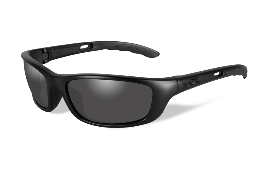 Wiley X P-17 Sunglasses in Wiley X P-17 Sunglasses