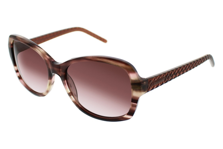 Ellen Tracy Veria Sunglasses in Brown Horn